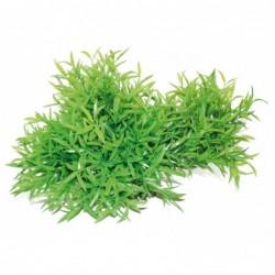 PLANT REPLICA BAMBOO 30X16CM