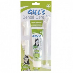 GILL'S KIT SOINS DENTAIRES