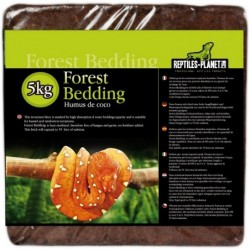 Forest Bedding