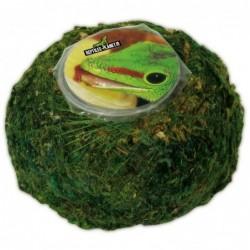 Repti Moss Ball