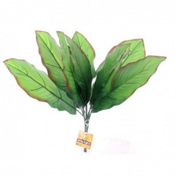 Repti Exotic Plant