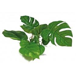 PLANT REPLICA ANUBIAS