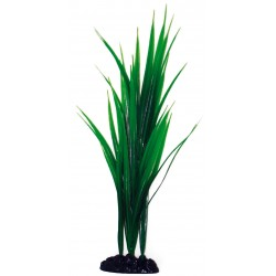 PLANT CLASSIC BAMBOO