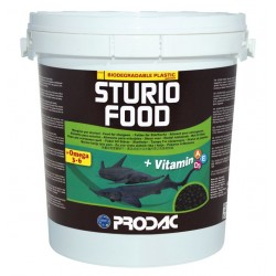 STURIO FOOD