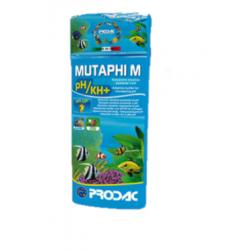MUTAPHI M